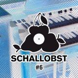 Schallobst #06 - Well Organized (2017-09-17 @ 674.fm)