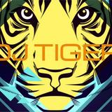 DJ Tiger May 2015 top 40 hits