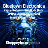 Bluetown Electronica live show 29.01.17