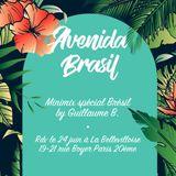 Avenida Brasil minimix spécial Brésil