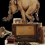 Radiofil p055 080612 - dub / dnb edition
