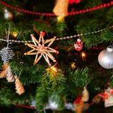 Musical - Mania : Christmas Special Edition 19.12