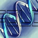Deacoy - DNA