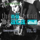 The Nu Sound Of Aca Vol. 13 Mix By Luis Ortega