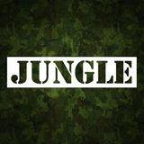 JUNGLE CLASSIC'S (VOL. 17) (DJ DU SET)