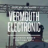 Deltaica Beach Festival 2014