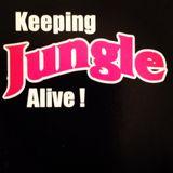 KLEVA1- Keeping JUNGLE Alive vol.1