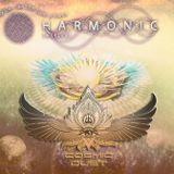 Harmonic festival (Lotus temple/downtempo) #France