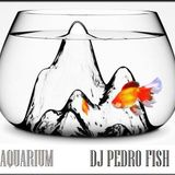 Aquarium EDM Xperience (DJ Pedro Fish) Live Set