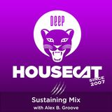 Deep House Cat Show - Sustaining Mix - with Alex B. Groove