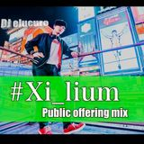 2018.8.12_Xi_lium公募mix