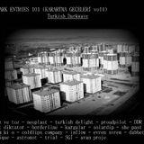 Dark Entries# 101 Karartma Geceleri vol 4 (Turkish Darkwave)