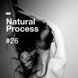 Natural Process #26