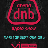 Arena dnb radio show vibe fm mixed by MIGHTY BOOGIE 25-sept-2012