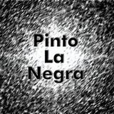 Pinto La Negra Episodio 001