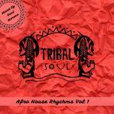 Tribal Soul - Afro House Rhythms Vol 1