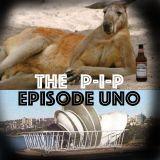 The PIP on Bondi Beach Radio Ep.1 - New Beginnings & Naturalisation