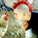 Punksnot