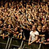 Festival madness