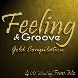 Feeling & Groove Gold Edition 04 (Present Sounds)