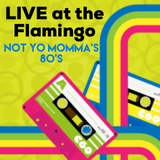 LIVE at the Flamingo Resort, St. Pete - Not Yo Momma's 80's