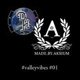 Aksium - #valleyvibes on Da Hub - 16-02-13 - Show #01