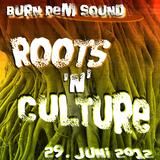 Burn Dem Sound - DubWar @ Roots'N'Culture (Sonderbar 29.6.2012) - Part I