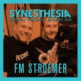 FM-STROEMER - Synesthesia Essential Housemix January 2018| www.fmstroemer.de