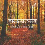 Enamoured 005: Autumn Haze