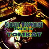Soulful Deephouse Mix TOMKAT