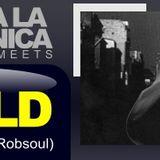 Viva la Electronica pres Dj W!ld (Catwash/Robsoul)