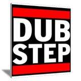 DJane Elite - Dubstep & Drumstep mix.04.2013