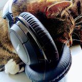 SUN FM 20 - 80's UK