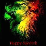 Viñatek 2015@Happy SayaTek_Raggatack Powah!