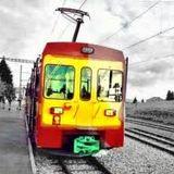 The Reggae Train