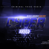 CyberBreed Podcast #5 - mixed by maphskiy