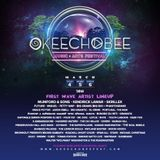 Skrillex- Live @ Okeechobee Music Festival