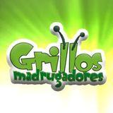 Nuestros dedos en Grillos Madrugadores (280515)