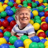 Life In The Ball Pit