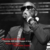 Spectrum Mix vol.10 - Dubstep, EDM meets Reggae & Soca -