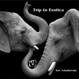 Trip to Exotica