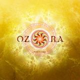 Live at Ozora Festival 2013, Hungary