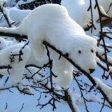 haringa selectah - atmospheric winter DnB selection 2