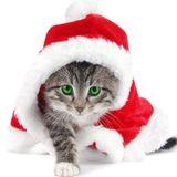 Christmas Mix 2011 by Dj Sundry