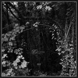 [Musicophilia] - Old Souls Part II (2015-2018)