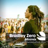 WF Minimix // Bradley Zero