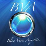 Aquatic Wetline LIVE Broadcast: Blue View Aquatics at the Eastfield Mall!!
