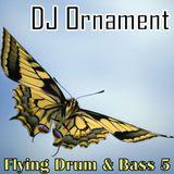 DJ Ornament - Flying Drum & Bass 5