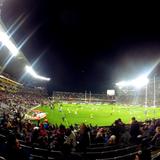 La folie rugby en Nouvelle-Zélande