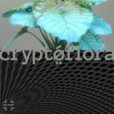 cryptoflora